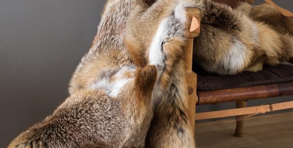 Fellkissen aus Rotfuchs (Schweizer Bergfüchse) 50cm*50cm
